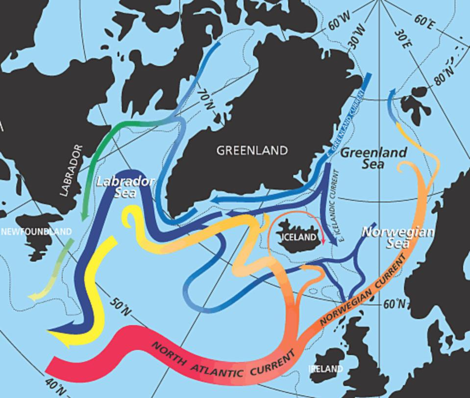 Schematic showing the movement of the North Atlantic Current to Northwestern Europe