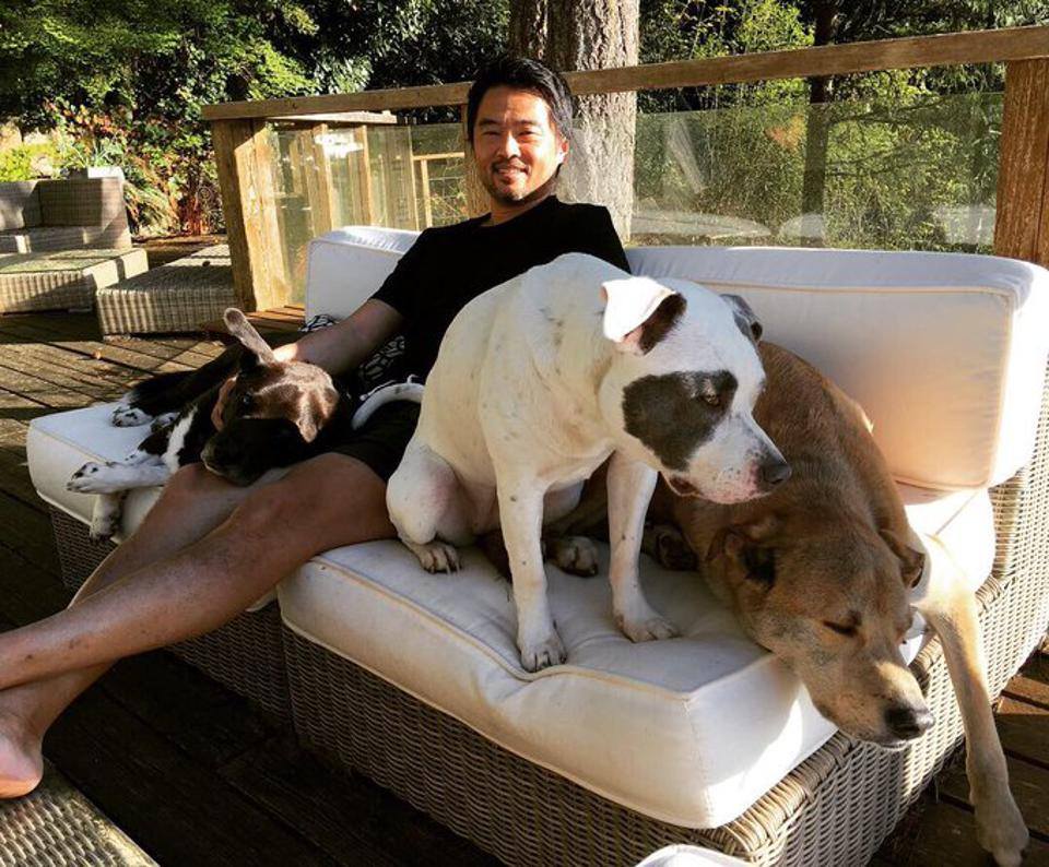 Paul Bae and his dogs
