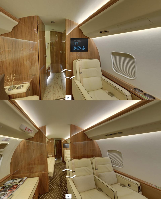 Carlos Ghosn private jet