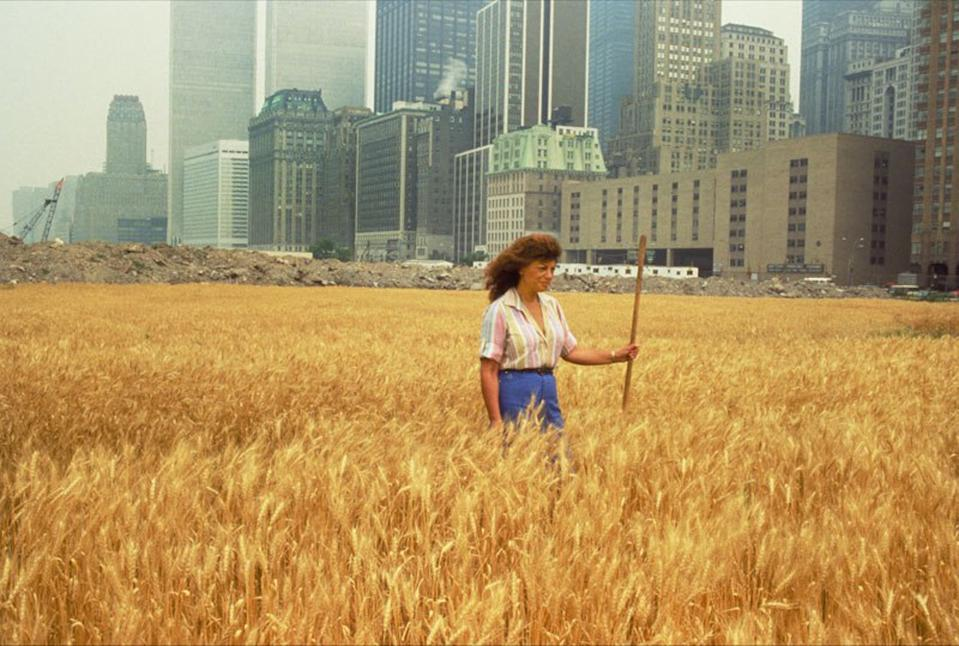 Agnes Denes, Wheatfield — A Confrontation. Two acres of wheat planted and harvested by the artist on the Battery Park landfill, Manhattan, Summer 1982. Commissioned by Public Art Fund. Courtesy the artist and Leslie Tonkonow Artworks + Projects. Photo: John McGrall