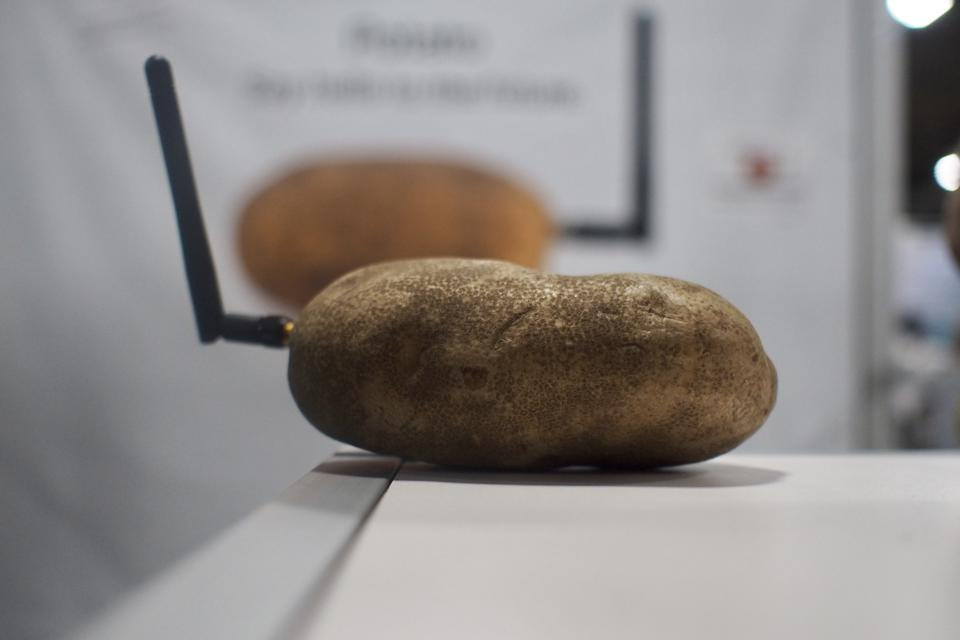 potato with antenna on a table at CES 2020