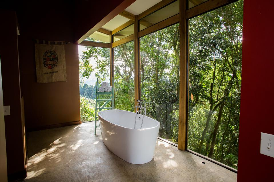 Forest Suite at El Chayote Lodge