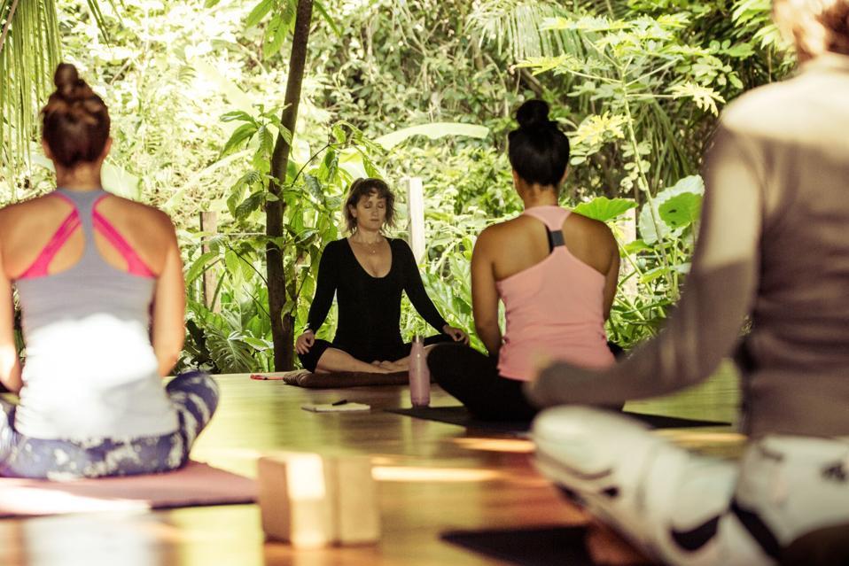 Daily classes range from Vinyasa to restorative