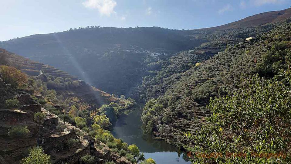 The spectacular view from Quinta do Panascal douro portugal
