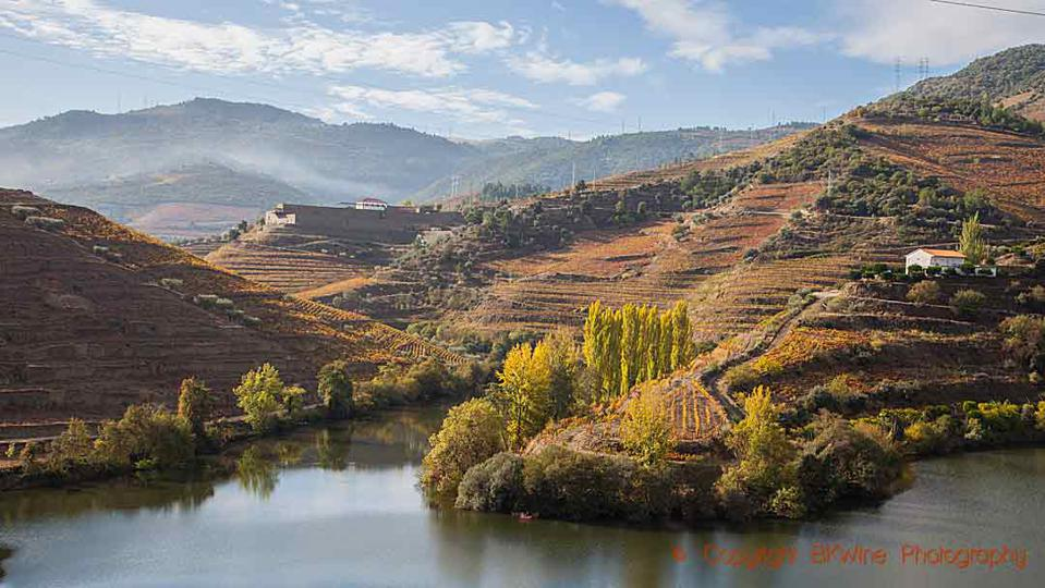 View over the river Tedo from Quinta do Tedo