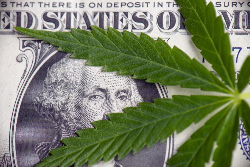 Detail of cannabis leaf over american dollar bill