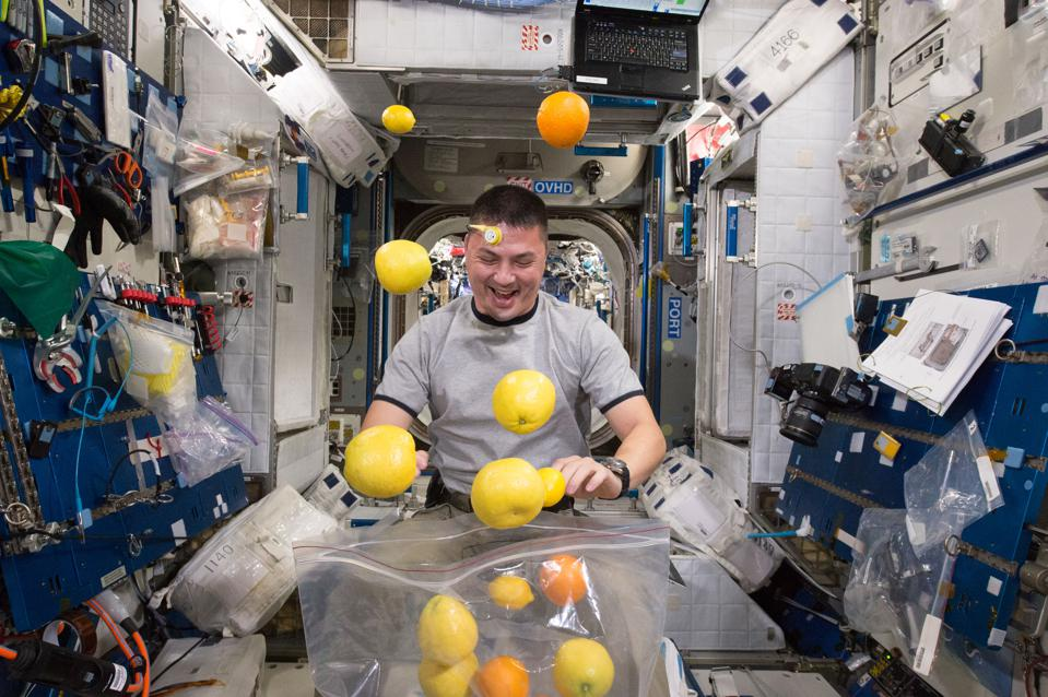 NASA astronaut Kjell Lindgren corrals the supply of fresh fruit that arrived on the Kounotori 5 H-II Transfer Vehicle (HTV-5.)