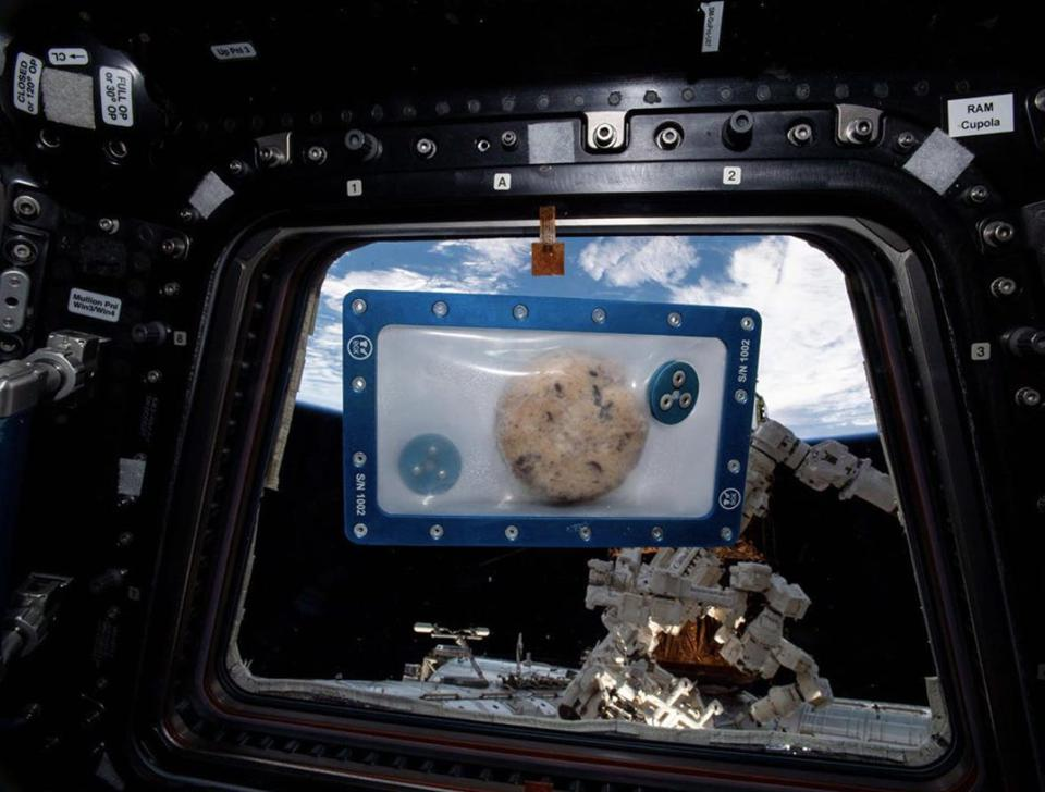 A chocolate chip cookie was baked aboard the International Space Station in December 2019 using Zero G Kitchen's microgravity oven.