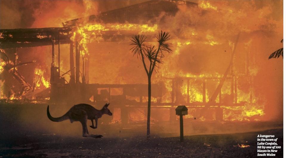 Guardian newspaper images of Australian bushfires