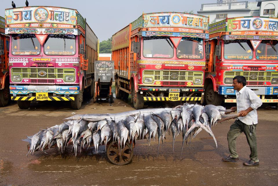 the largest fish markets in India.