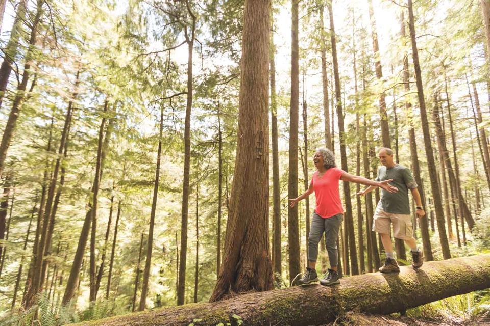 Seven Steps Toward A Long-Lasting Retirement – Step 1: Retirement Income Plan