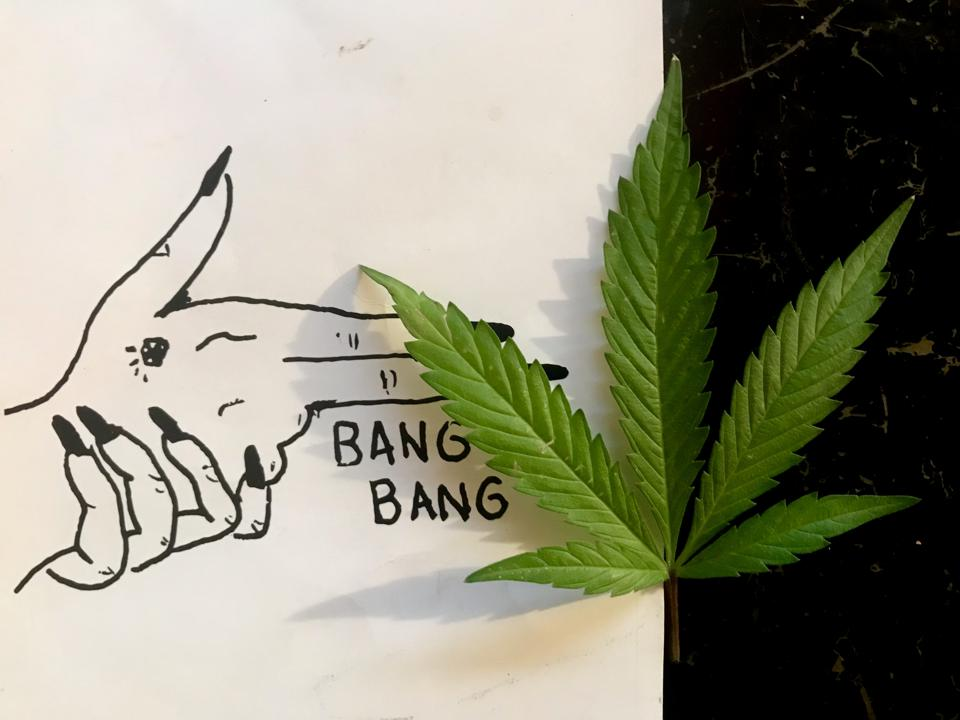 Cannabis Leaf On Illustration By ″Stoner Girl Diary″