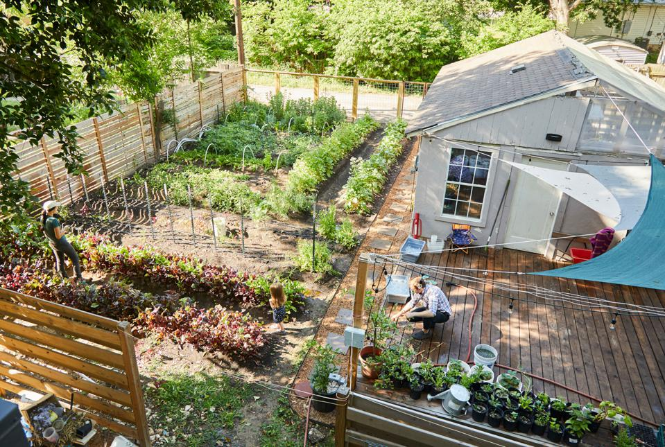 How A Secret Garden Fuels The Concept At This Acclaimed East Austin Restaurant