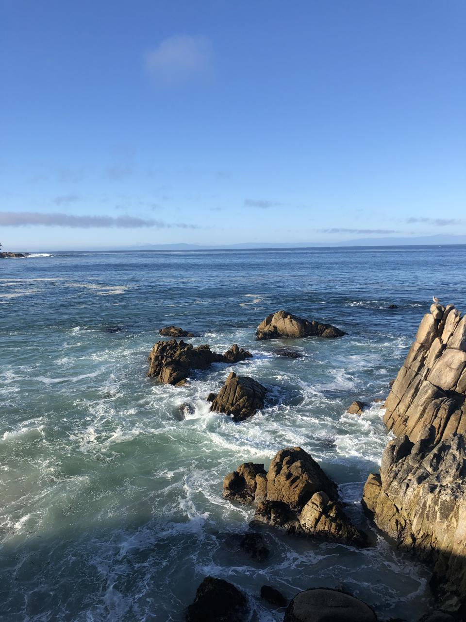 Monterey California coastline