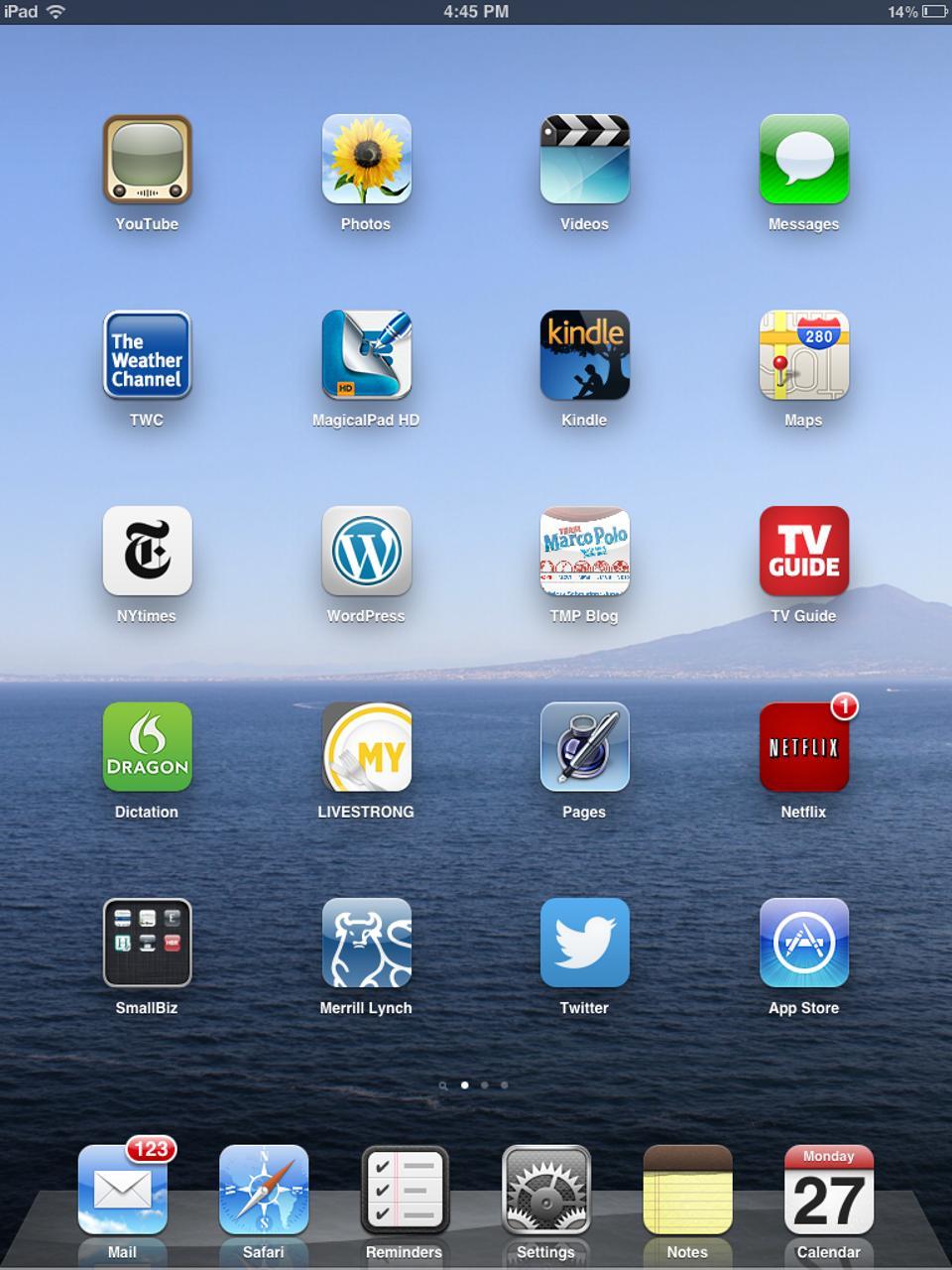 iPad 1 Home Screen