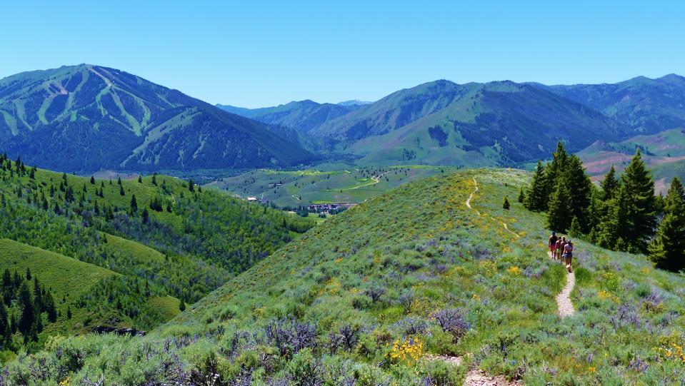 Sun Valley mountain trail