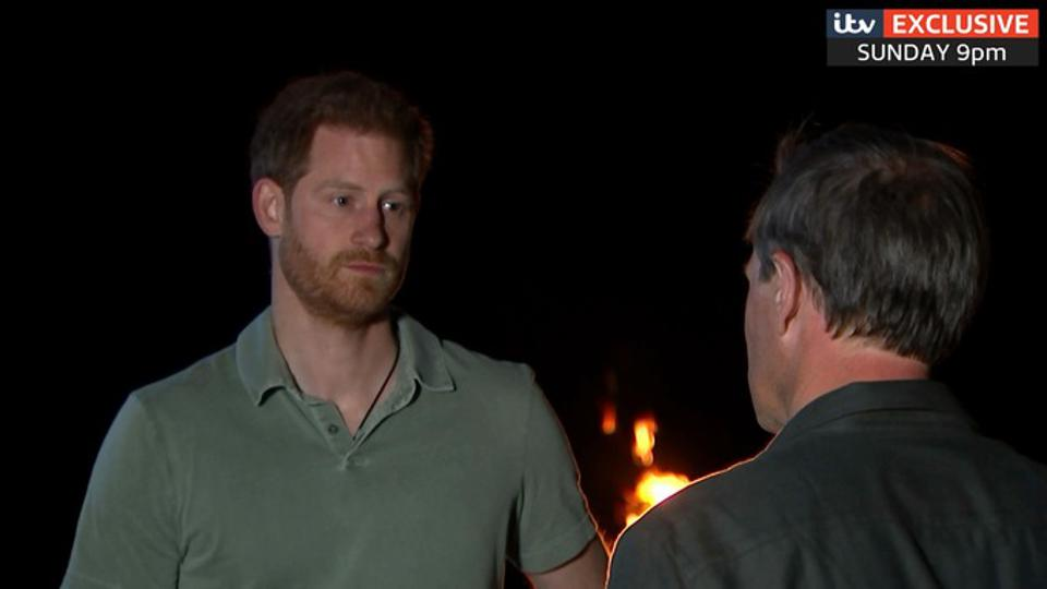 Prince Harry spoke to Tom Bradby during the 10-day tour. Credit: ITV