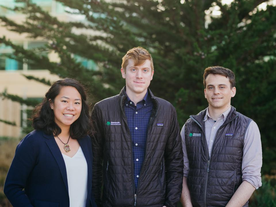 Mammoth Biosciences cofounders (from left to right): Janice Chen, Lucas Harrington and Trevor Martin.