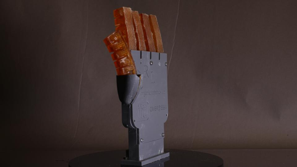 Robotic soft hand with finger-like projections