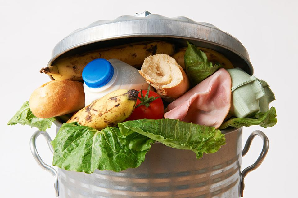 Can of food waste