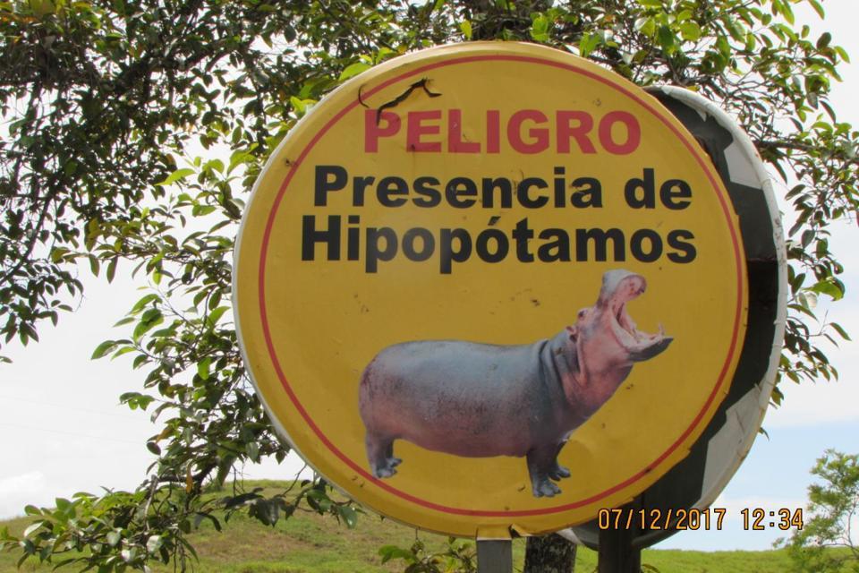 Color photo of a yellow sign with a photo of a hippo and the words ″Peligro Presencia de Hipopotamos″