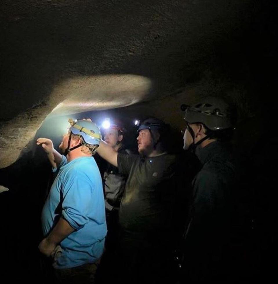 Shark teeth embedded in cave walls.