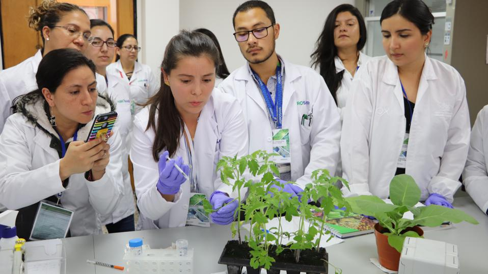 Colombian plant pathologist Carolina Mazo-Molina giving a workshop at the XXXIV Congress of Phytopathology and Related Sciences - ASCOLFI 2019.