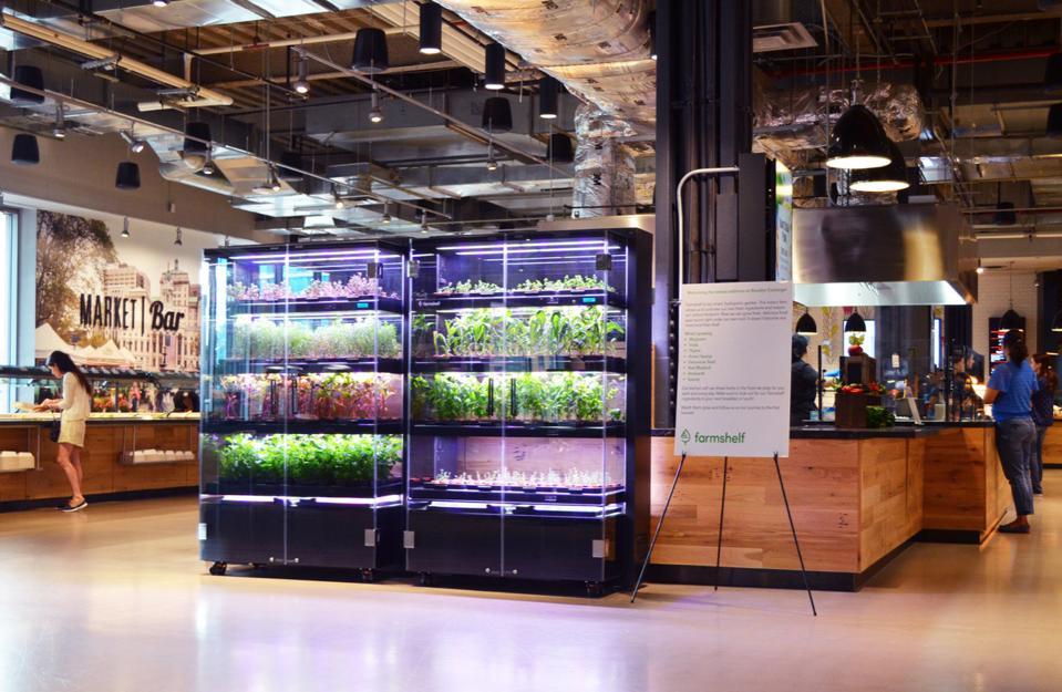 Farmshelf in MetroTech Center, Courtesy of Farmshelf