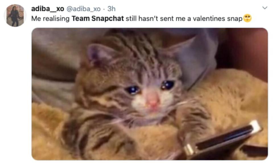 A screenshot of a tweet: someone else who didn't get a message from Team Snapchat