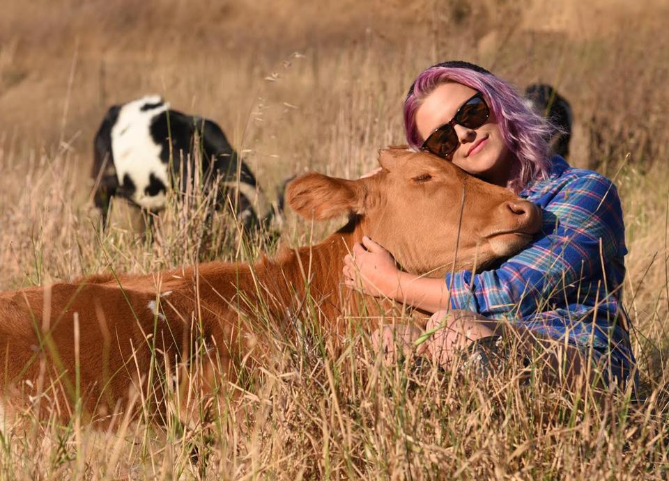 A volunteer at Miyoko Schinner's  farm animal refuge hugs a cow. The California agriculture department has demanded she take down the photo from her vegan cheese website.