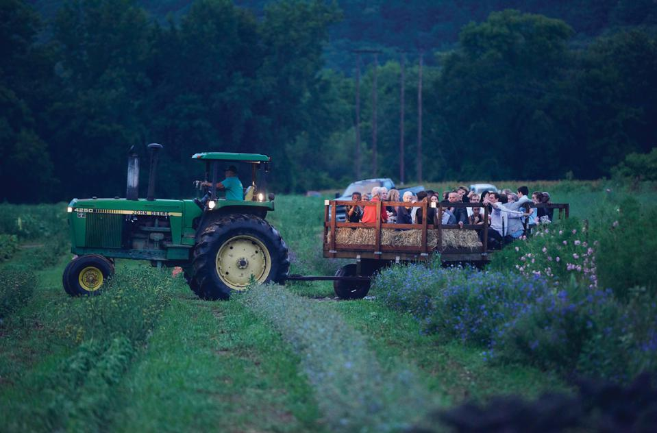 At a Fête wedding, guests were taken for a journey through the fields