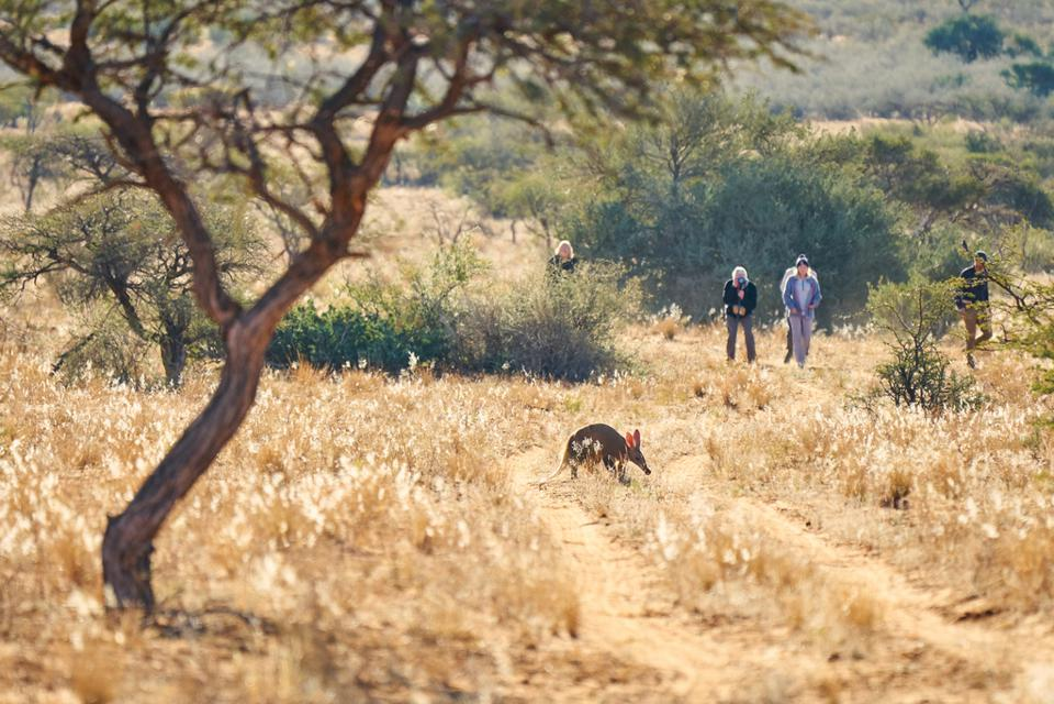 sustainable Africa eco lodge