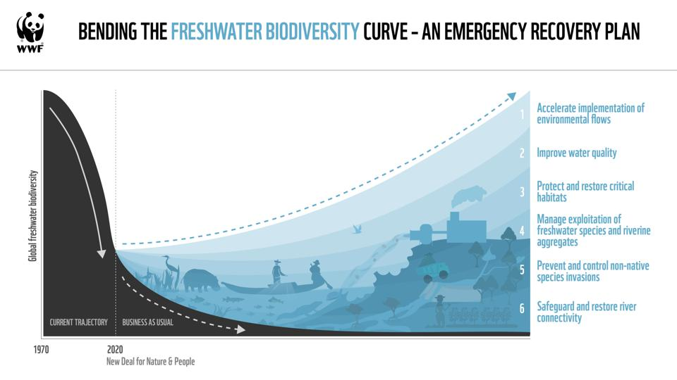 Bend the curve of freshwater biodiversity loss