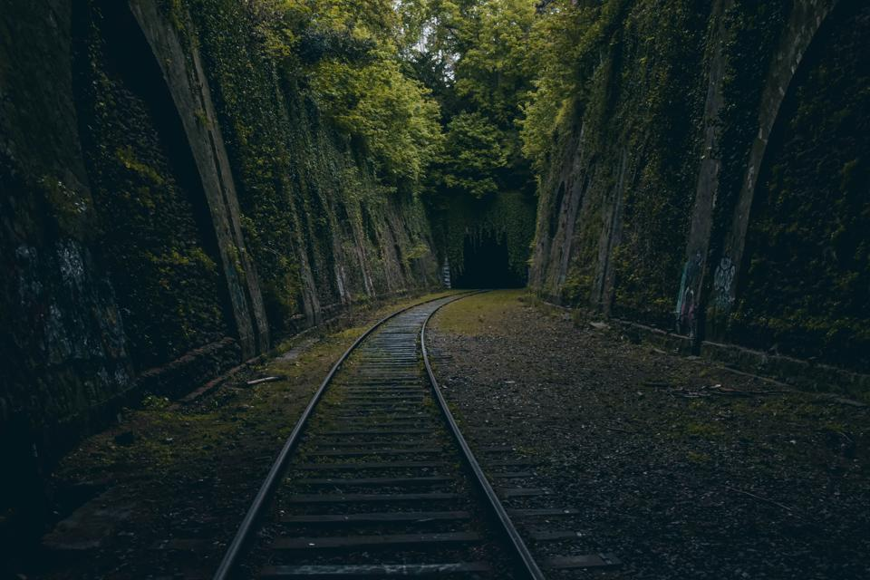 La Petite Ceinture around Paris which shows the abandoned railway line disappear into a dark tunnel overgrown with beautiful trees