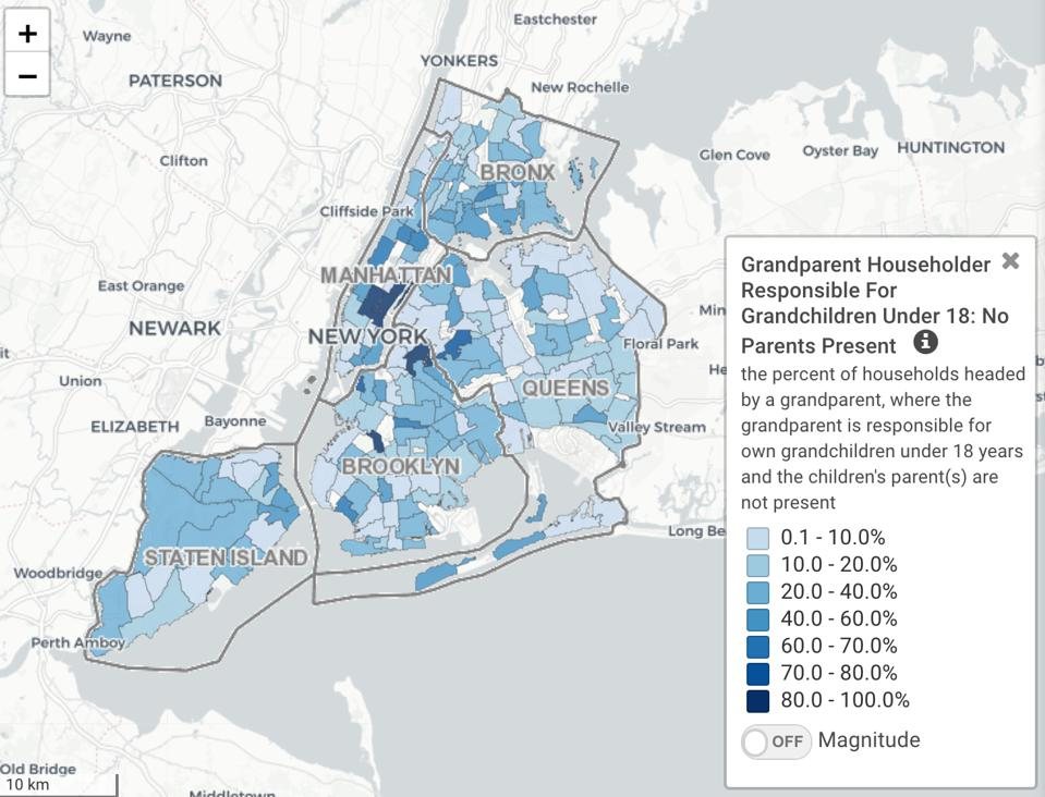 Screenshot of IMAGE: NYC, Interactive Map for Aging