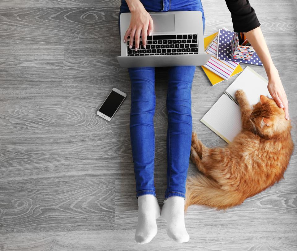 5 Ways Loving My Cat Made Me A Better Business Owner | Stephanie Burns