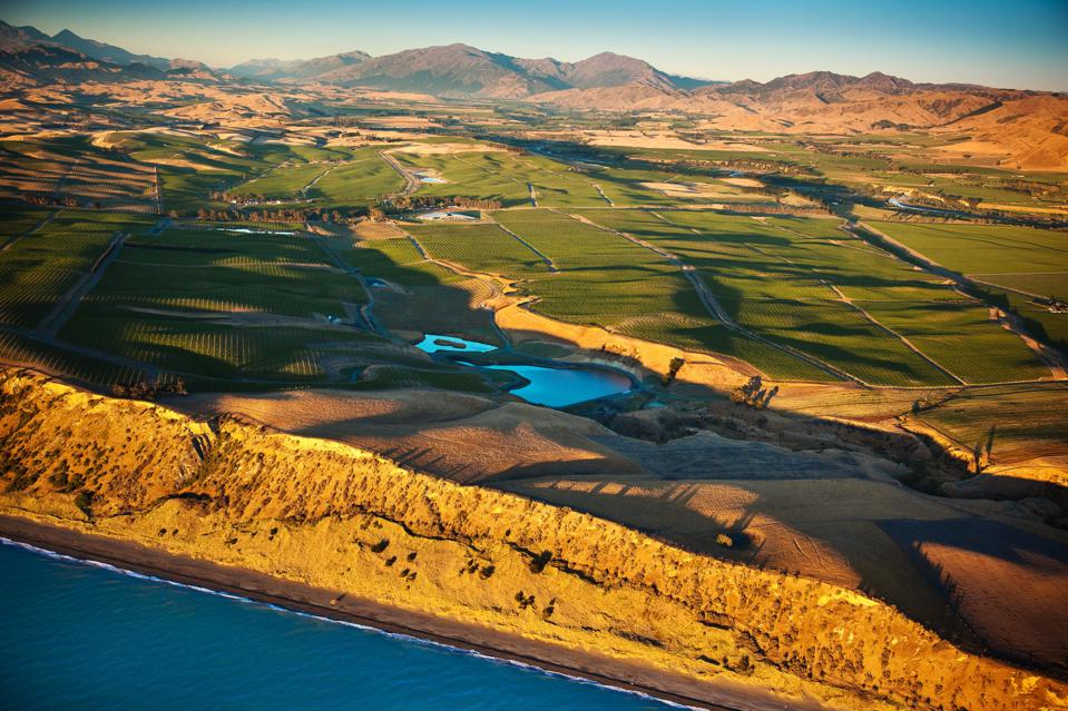 Aerial View of Yealands Seaview Vineyard