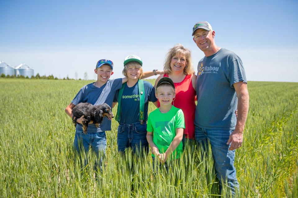 Wheat farmer Ron Rabou is transitioning to organic farming.