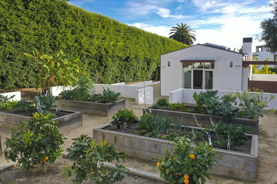 Detached second residence and fruit orchard