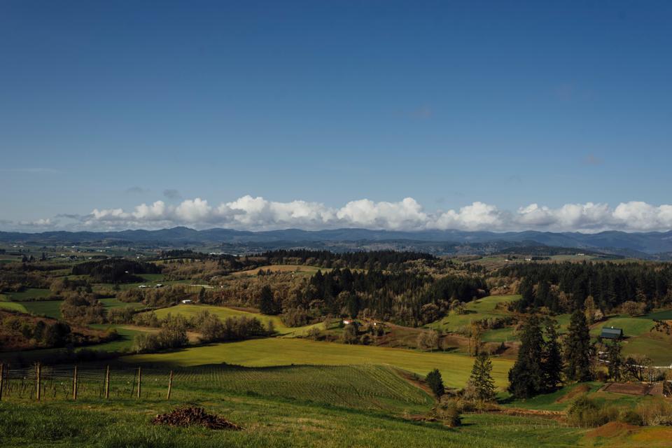 Early spring at Bishop Creek, Oregon