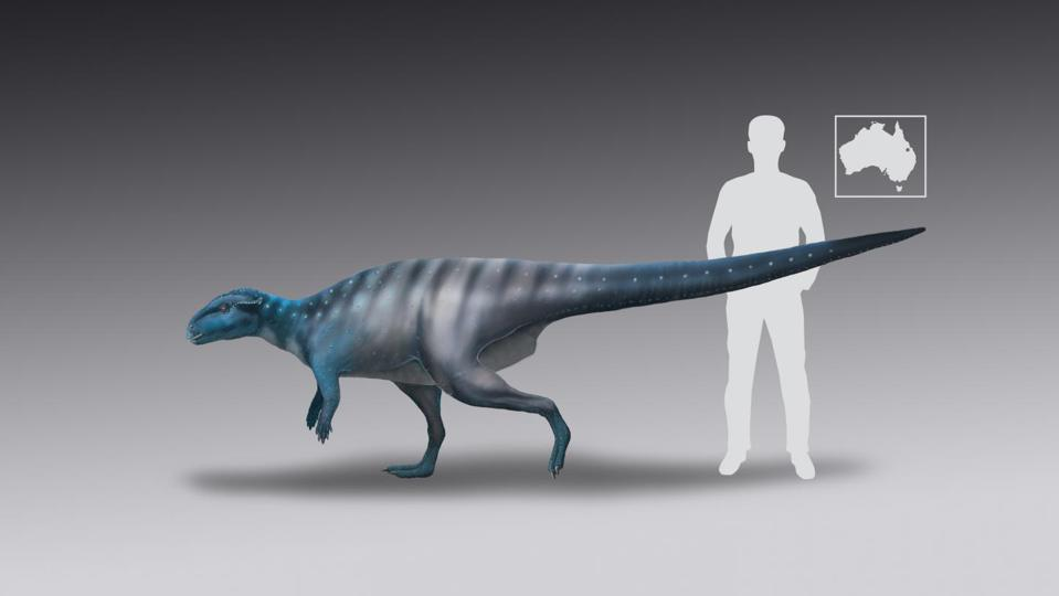 Color image of a small bipedal dinosaur with a human silhouette for scale.