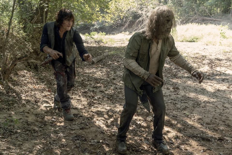 The Walking Dead Stalker