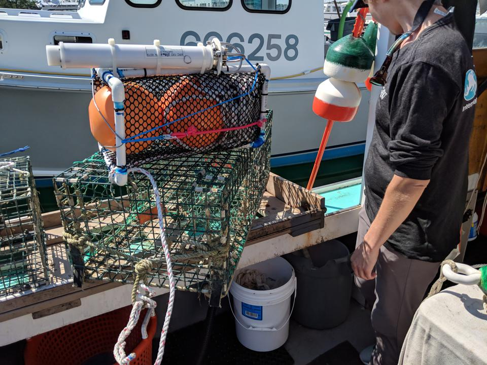ropeless fishing technology for lobster fishermen in Cape Cod, MA