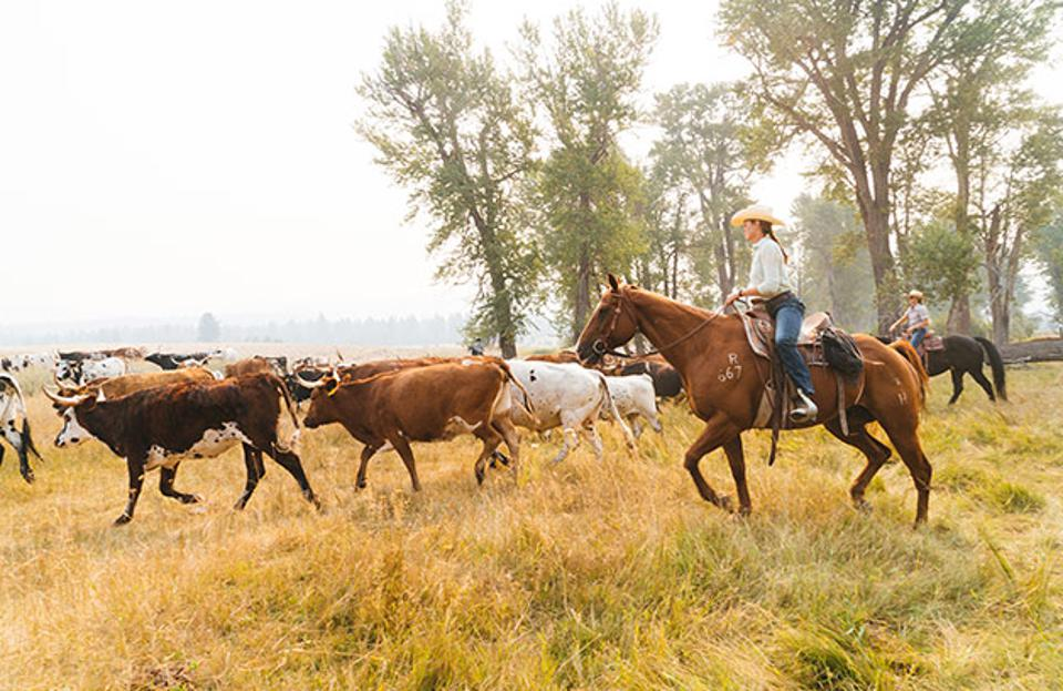 Horseback riding at The Resort at Paws Up