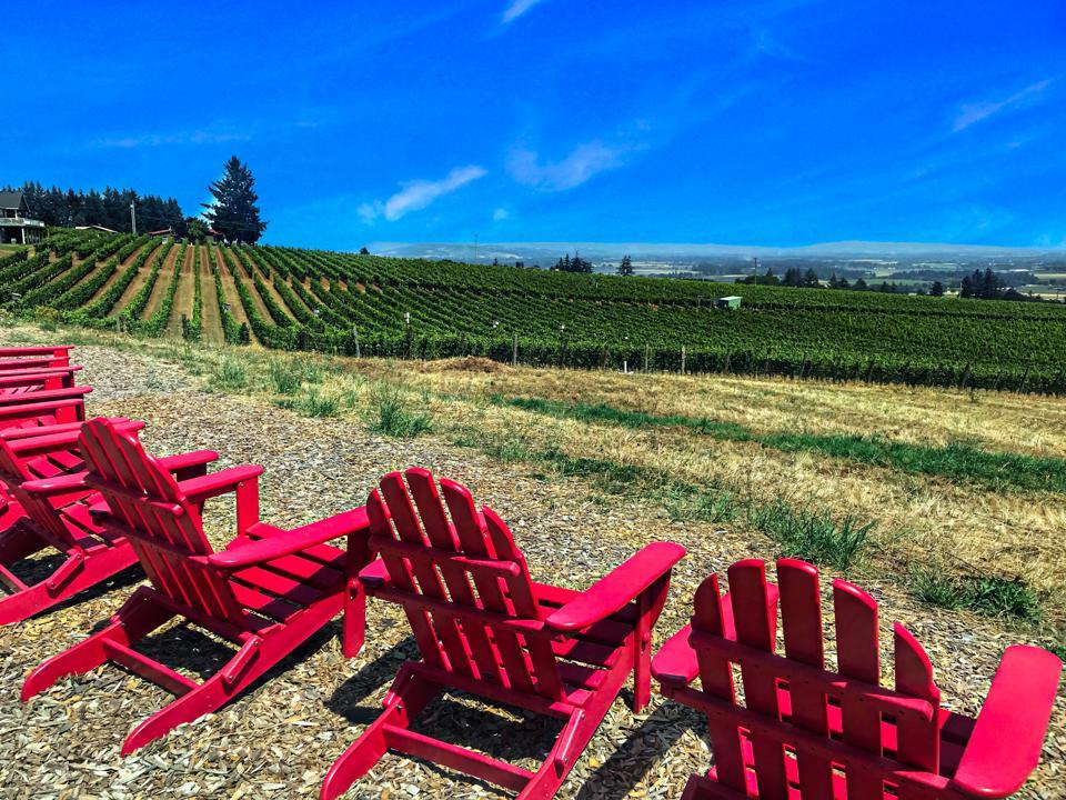 Overlooking Brooks Estate Vineyard