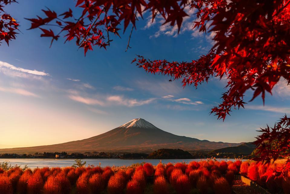 Beautiful red Autumn at Kawaguchigo lake, Japan