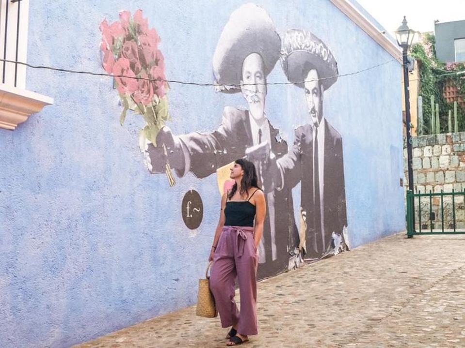 Susan Metenosky Ripley Branding Quickies Book Oaxaca
