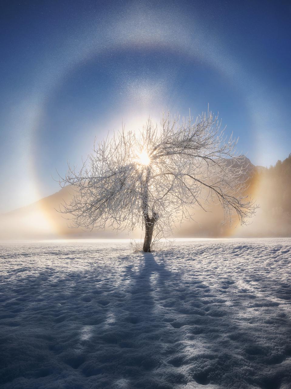 Slovenian snow, fog and sun