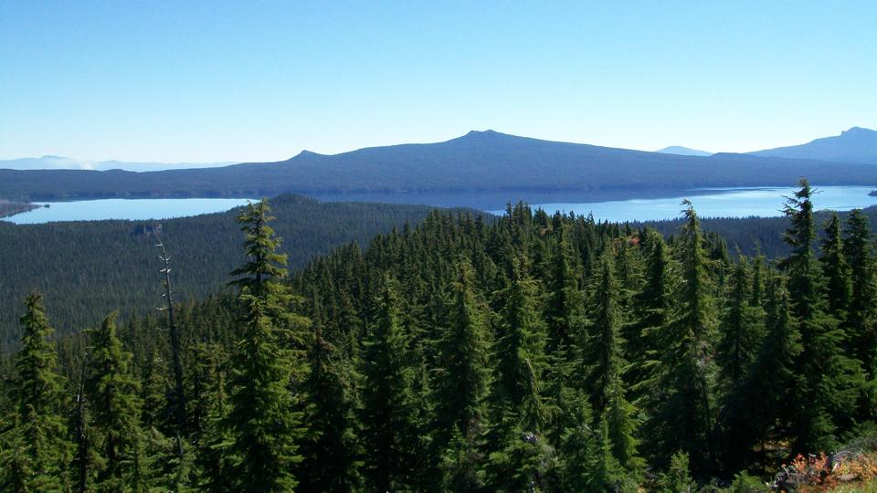 View_of_Waldo_Lake,_Willamette_National_Forest_(34727458872)