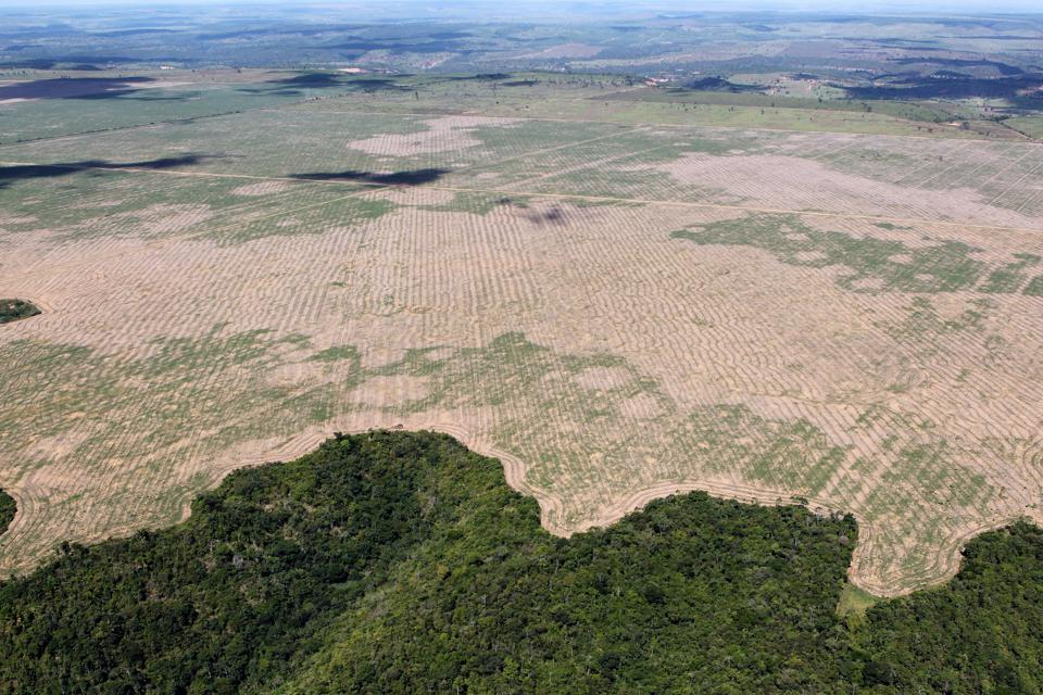 Deforestation in the Maranhão state of Brazil, 2016